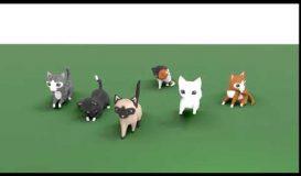 Cat advanced animations